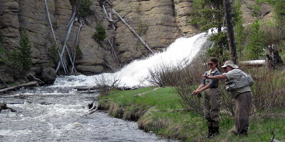 Beginner Fly Fishing Guided Trips in Yellowstone Park and