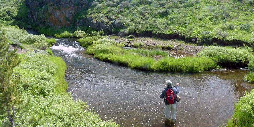 Angler fishing a small meadow stream
